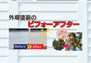 兵庫県西宮・芦屋地域密着の外壁屋根塗装専門店ペイントウォールの外塀塗装事例紹介!